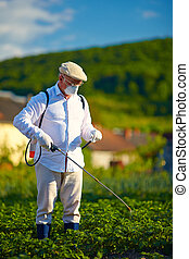 man in protective clothes spraying insecticide on potatoes