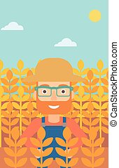 Man in wheat field. - A hipster man with the beard standing...