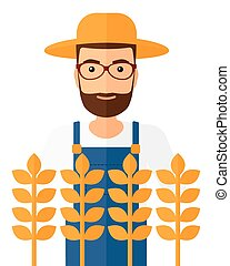Man in wheat field. - A hipster farmer with the beard...