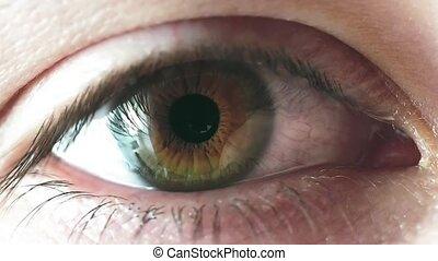 Man iris eye close up - Extreme close up man eye. Human...