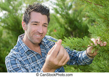 man is checking tree in his garden