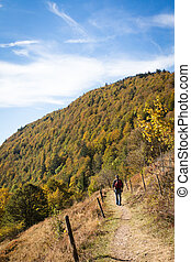 Man is hiking on a beautiful trail in the black forest