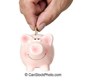 Man is putting money into saving pig, finance theme