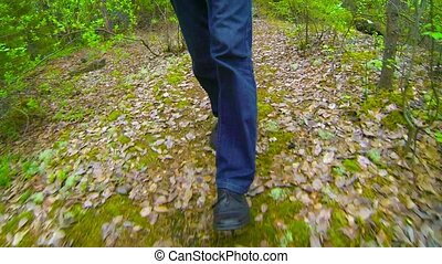 Man is walking in the autumn forest. Legs close up