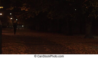 Man jogs at night in a park, front