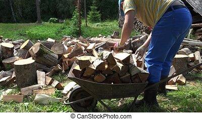 man load cut firewood in wheelbarrow in village in summer. 4K