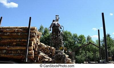 man load log transport - Man loading felled tree logs with...
