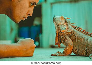 Man looking at iguana