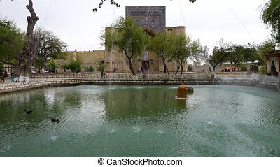 Man Made Pond in Front of Mosque - Handheld, panning,...