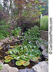 Man Made P:ond - Man made pond in the backyard of a suburban...