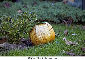 Man-made pumpkin on green grass in the garden.