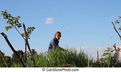 man makes hay