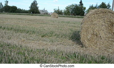 man move straw bale field