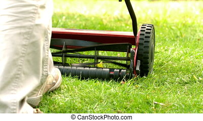 Man mowing the grass - Man mowing the grass in slow motion...