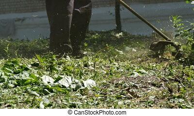 Man mowing wild grass grown grass with a lawn mower - A man...