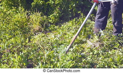 Man mows the grass with a trimmer - A man mows the grass...