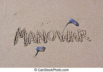 Man O War beach Warning - A man o war beach warning written...
