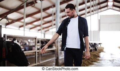 man, of, farmer, met, koien, in, koestal, op, melkveehouderij