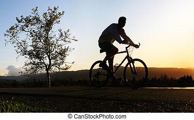 man, paardrijden, zijn, fiets