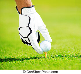 Man Placing Golf Ball on Tee - Man Placing Golf Ball on the...