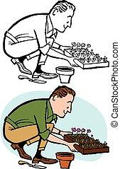 Man Planting Seedlings - A man plants new seedlings into his...