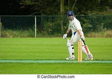 man playing cricket  - a man playing cricket