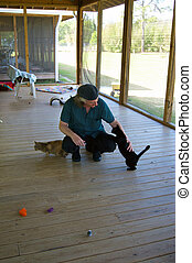 man playing with cats at animal shelter - A man is squatting...