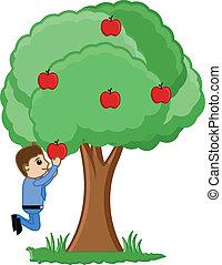 Man Plucking an Apple Vector - Conceptual Drawing Art of ...