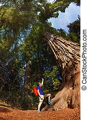 Man pointing at big tree in Redwood California