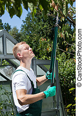 Man pruning in front of greenhouse