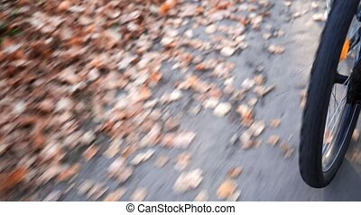 Man rides a bike in the autumn forest. Wheel close-up. Very fast footage.