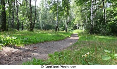 man rides bicycle in park