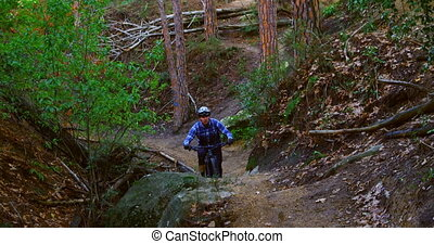 Man riding bicycle in forest 4k - Man riding bicycle in ...