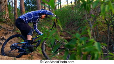 Man riding bicycle in forest at countryside 4k