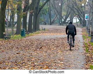 Man riding bicycle in park in autumn - Man riding bike in...