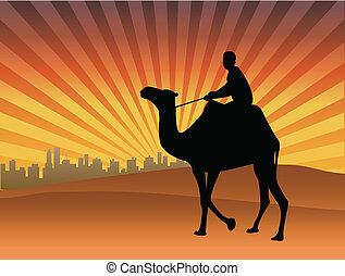 Man riding camel in the desert - vector