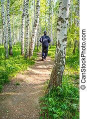 Man running in birch grove