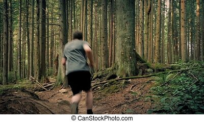 Man Running On Trail Through Trees - Young man jogs up path...