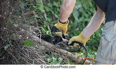 man sawing a tree limb - a man uses a chain saw to cut a...