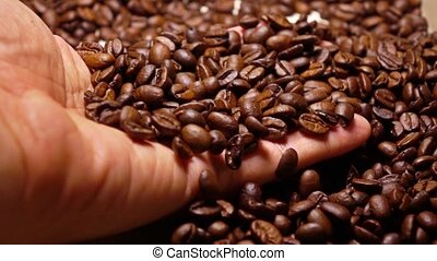 Man scooping roasted coffee beans, super slow motion shot -...