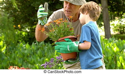 Man showing potted plant to grandson in slow motion