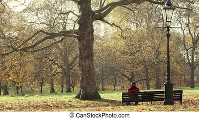 Man sitting on a bench in a park