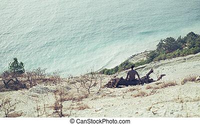 Man sitting on snag on coast