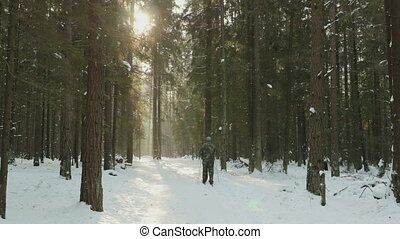 Man skiing in the winter forest