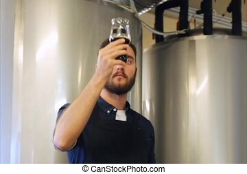 man smelling and testing beer or ale at brewery - alcohol...