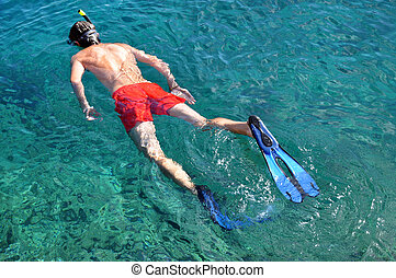 Man snorkeling in a tropical sea over a coral reef