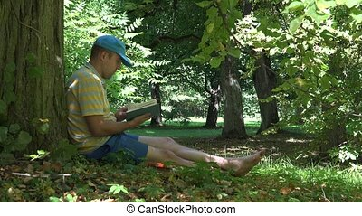 Man spent his holiday time reading novel book under old tree in park. 4K