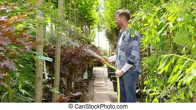 Man spraying green plants in garden