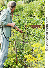 man spraying of insecticide on country garden