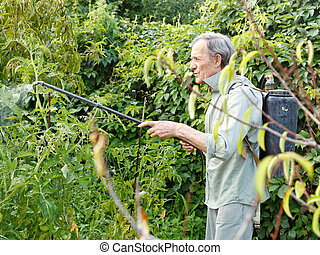 man spraying of pesticide on country garden